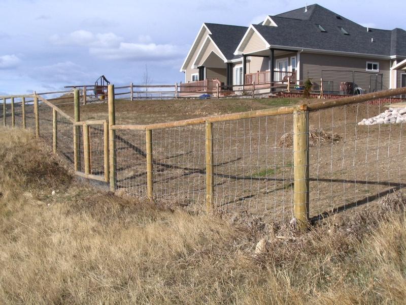 6 Ft Deer Fence.Deer Jumps 6 Foot Fence Barely YouTube. Hog Wire ...