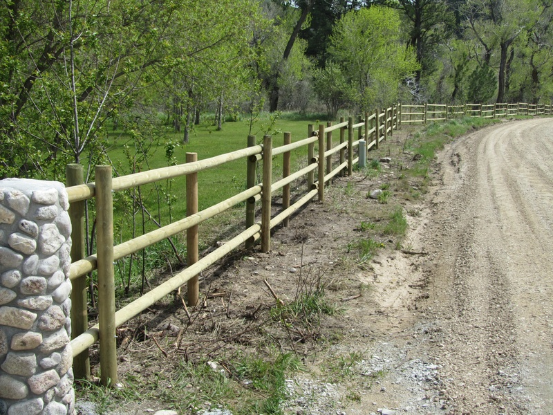 forest corridor with fence - photo #14